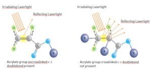 Extinction of light in cross-linked molecules