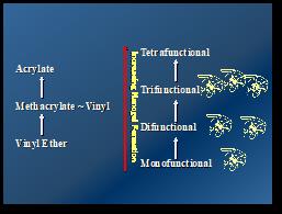 monomer-functionality