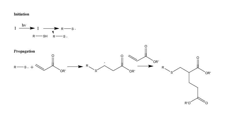 Thiol-ene and thiol-acrylate mechanism